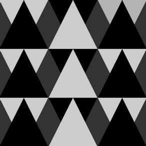 160483-PM-163-63