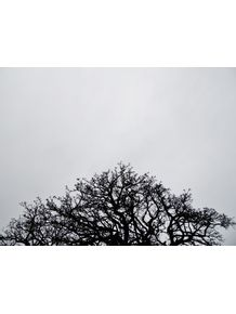 160607-PM-167-11