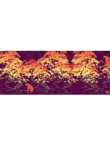 floresta-dos-tigres