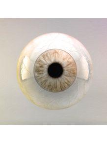 eye-ii