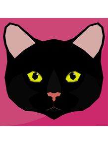 meow-series--black