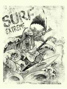 crazy-surf