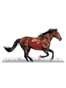 natureza-de-triangulos--cavalo