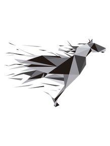 liberdade-cavalo