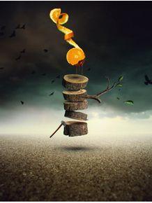 the-orange-tree