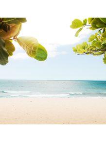 beach-peace
