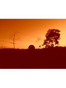 road-sunset