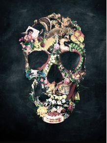 vintage-skull