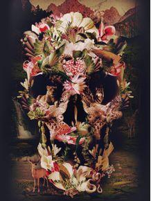 jungle-skull