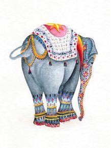 elefantedasorte