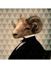 classy-goat