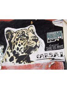 carsal-bogota