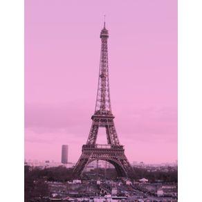 paris-merci-i