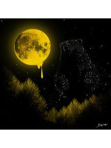 lua-de-mel-x-ursa-maior