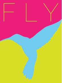 fly-minimalista