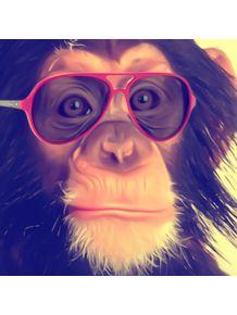 the-monkey-lifestyle-quadrado