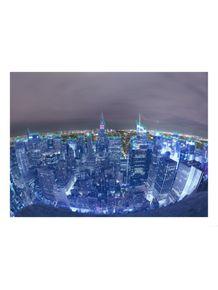 ny-new-york-fisheye
