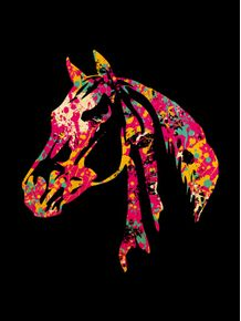 horse-colors
