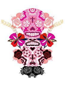 caveira-mexicana