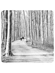 passeio-na-floresta-mata-arvores-casal-255