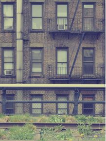 ny-vintage-windows