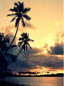 amanhecer-na-lagoa