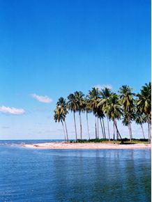 paraiso-tropical