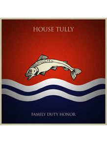 house-tully