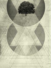 a-geometria-natural-das-coisas