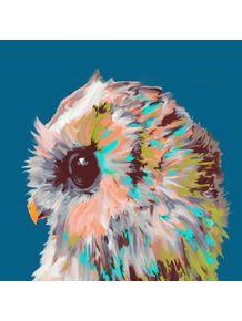 coruja-pintada