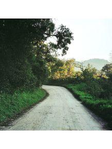 caminhos-verde