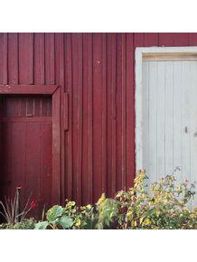 duas-portas-e-plantinhas