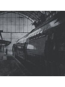 haarlem-railway-station-netherlands