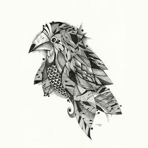 bird-v