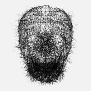 calavera-lines