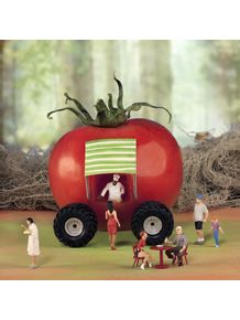 the-big-foodt-truck-tomato-
