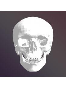 paper-skull-i