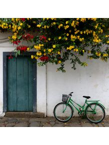 bicicleta-flor