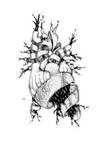 autopsia-coracao