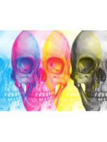 skull-4-colors