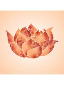 lotus-ii