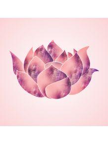 lotus-iii