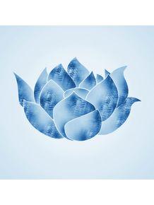 lotus-iv