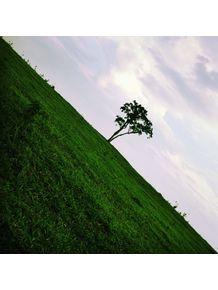 vertical-tree