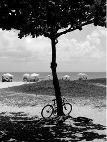 sombra-e-bike