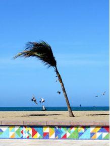 praia-e-vento