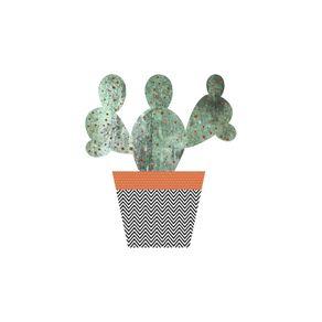 new-cactus