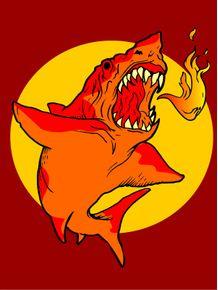 hot-shark