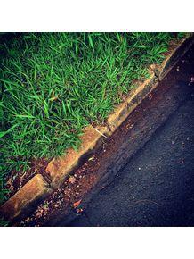 asfalto-e-grama