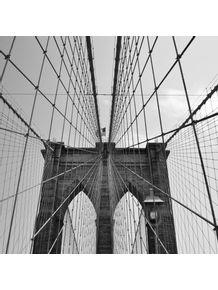 spider-bridge
